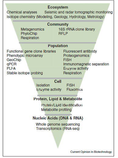 Figure 3. Systems biology from molecules to ecosystems