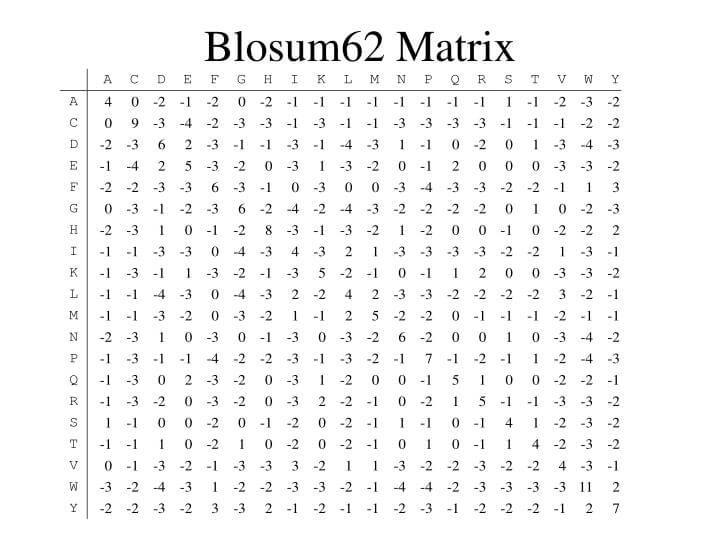 Фигура 4. BLOSUM45 използвана за сравняване на аминокиселинни секвенции