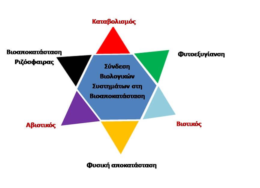 Εικόνα 2. Συσχέτιση των βιολογικών συστημάτων με τη βιοαποκατάσταση (Koehmelet al. 2016)