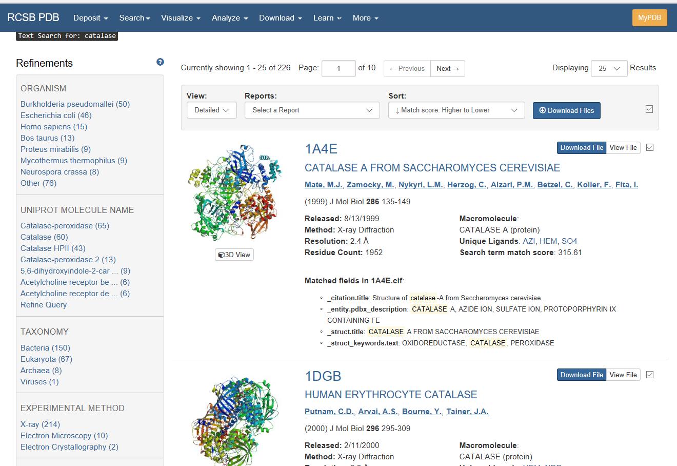 Δομή βάσεων δεδομένων ιστότοπων