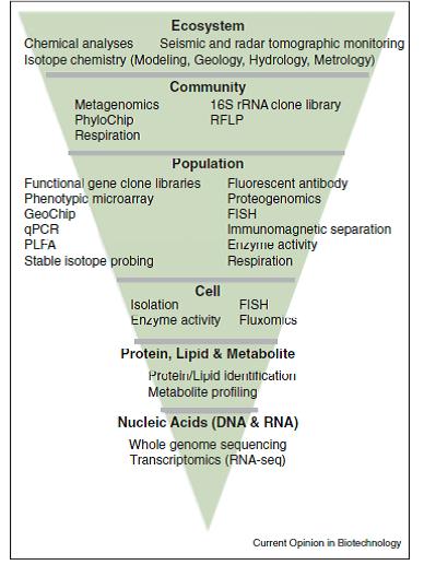 Şekil 3. Moleküllerden ekosisteme sistem biyolojisi